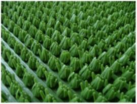 Рулонное покрытие Травка моховой